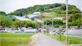 石原果樹園風景写真