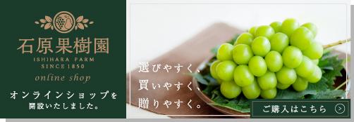 石原果樹園オンラインショップ